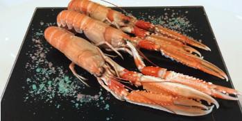 Con sabor a mar